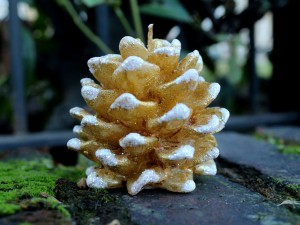 Pine Cone Handmade Candle - Small